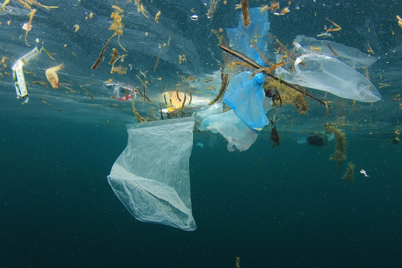 PLASTIKA 2019 PETICIJA plastic_ocean_pollution___shutterstock__rich_carey__wwf_677550