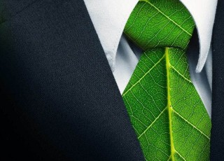 sustainability managers
